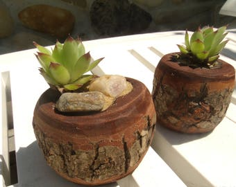 Minimalist Planter, Modern Planter, Succulent Planter, Cactus Planter, Natural