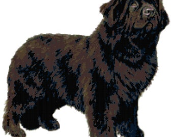 Newfoundland Dog Counted Cross Stitch Pattern