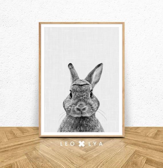Black and white rabbit print woodlands animals bunny print rabbit photo animal photography nursery decor nursery prints wall art