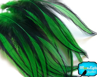 USA Feathers, 10 Pieces - KELLY GREEN Laced Long Rooster Cape Feathers : 3572