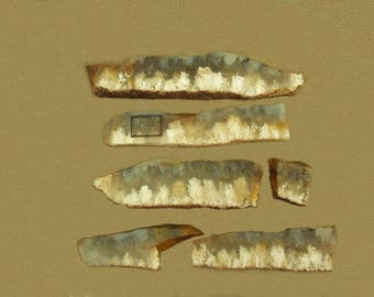 Grave Yard Point Plume Agate***Four Small Slabs***