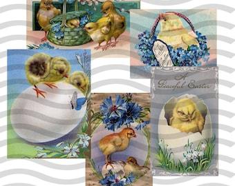Vintage Lot 5 Clip Art Images Early 1900s Easter Chicks Egg Digital Download PNG