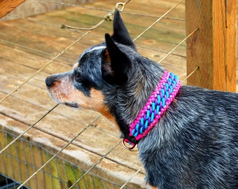 Custom Candy Stripe Paracord Dog Collar, Choose Your Colors & Closure Type, Thick Dog Collar, Wide Dog Collar, Sight Hound Braided Collar