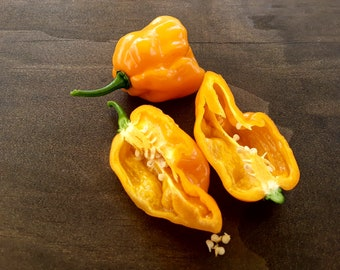 20 Golden Scorpion peppers seeds: Open pollinated/ Non GMO/ Heirloom seeds. Seeds from this year's harvest!