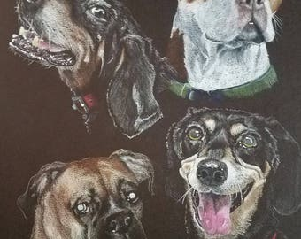 "A Custom Pet Portrait, 11"" x 14"""