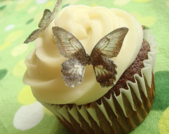 Edible Butterflies - 20 small brown and green