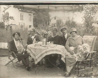 Vintage Antique 1920/1930s French  déjeuner at the country with dogs