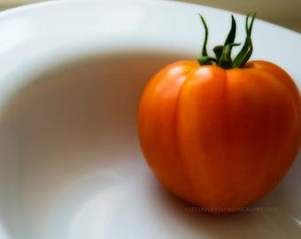 tomato print, kitchen decor, red wall art, food photo, orange, white, summer garden, cafe wall art, minimalist photograph, 8x10 11x14