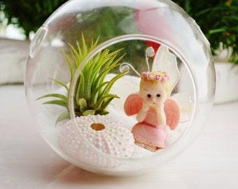 Angel Beach Terrarium Kit ~Little Pink Angel ~ Pink Sea Urchin ~ Glass Terrarium with Air Plant ~ Gift ~ For Her ~ For Mom ~ Precious Angel