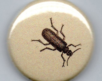 Spanish Fly Vintage Image 1 inch Button