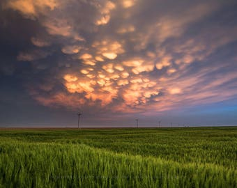 Fine Art Sky Photography Print - Picture of Sunlit Mammatus Clouds Over Fields in Western Kansas Nature Photograph Scenic Home Decor