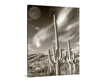 Desert Landscape Art, Cactus Photograph, Saguaro Art, Surreal Art, Moon Picture, Western Picture, Arizona Gift, Tucson Gift, Southwest Art