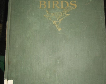 An Introduction to Birds 1965