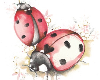 Ladybirds Illustration •
