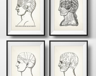 Phrenology Prints - Set of Four - 1899 - PP 11-14 - Fine art print of a vintage scientific or pseudoscience antique medical illustration