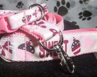 Dog leash and collar set with pink webbing