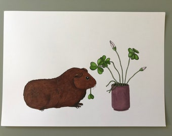 Original drawing, guinea pig