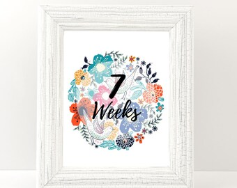 Pregnancy Week by Week, Weekly pregnancy, Pregnancy Milestone, Pregnancy countdown, Photo Prop, Weeks 6-40 - Girl & Boy signs - Printable.