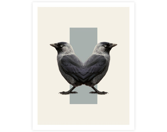 Birds Art Print - Double Animals