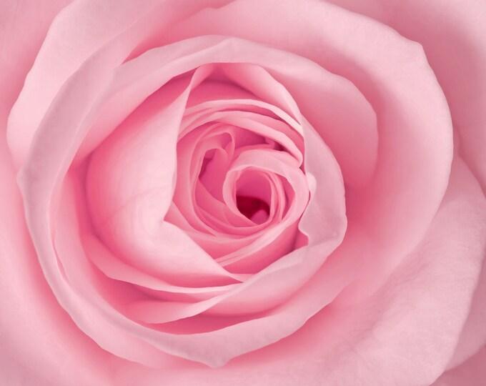 Rose Water, Handmade Natural Rosewater, Face Toner, Organic Rosewater, Facial Care, All Natural Toner, Rosewater, Anti-Aging Skin Care