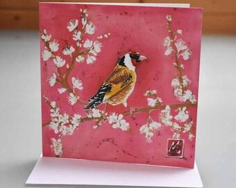 Goldfinch on Blossom Card - goldfinch card, bird card, finch greeting card, bird birthday card, blank inside card, garden bird card