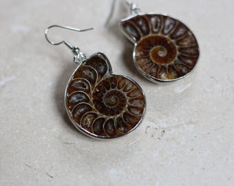 AMMONITE EARRINGS - Fossil earrings - Ammonites - Crystal - Archaeology - Sacred Geometry - Fractal - Shell Jewellery - Handmade Earrings
