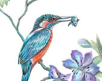 Kingfisher bird, wild life watercolor art print, size 8'x10'/A4. (No. 9)