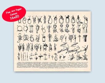 Sailor knots, Canvas Knots Print, Nautical knots, Seaside Prints, sailors gift, Nautical art, sailing sailors center, educational 16x20