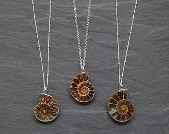 Prehistoric Relic / Ammonite Fossil / Ammonite Necklace / Silver Ammonite Necklace / Ammonite Pendant