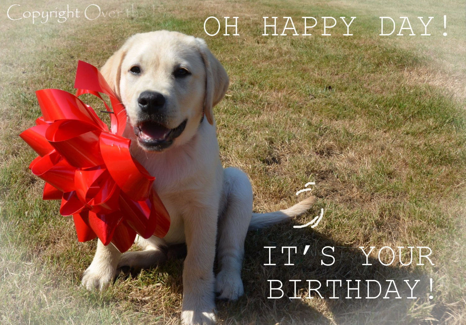 Dog birthday card yellow labrador puppy with happy birthday zoom kristyandbryce Choice Image