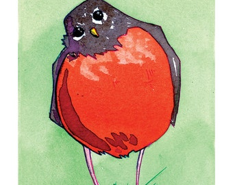 State Birds - Robin