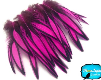 Laced Feathers, 1 Dozen - HOT PINK Laced Hen Cape Feather : 2322