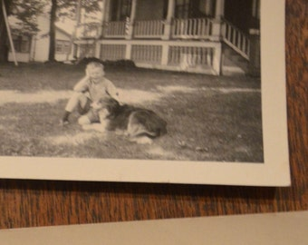 Lot of five black and white old antique vintage photographs pictures photos dog children collie bulldog puppy