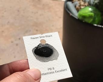 Dot Card Handmade Watercolor Paint Raven Vine Black