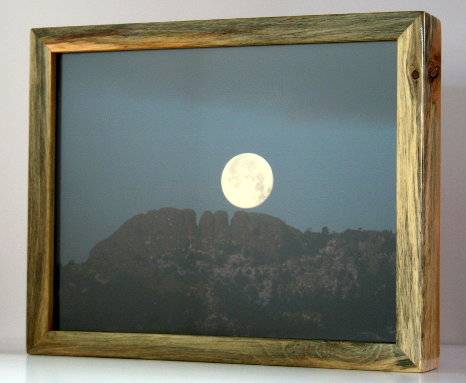 Colorado Beetle Kill Blue Stain Pine Picture Frame (Picture Size 11 ...