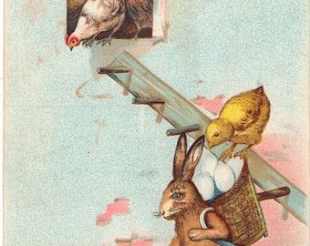 Vintage Easter Postcard, Rabbit Carrying Basket of Eggs, Chicks Loading from Ladder, 1907