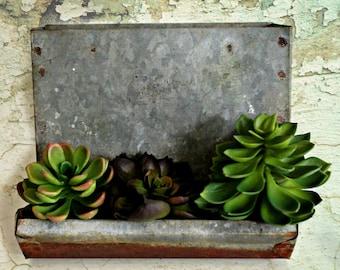 vintage galvanized chicken feeder, farmhouse style, succulent planter, outdoor planter, rustic decor