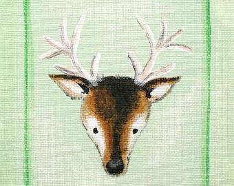Mini Deer Taxidermy