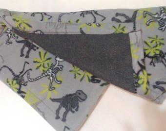Dinosaur Fleece Baby Blanket