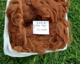 "Raw Alpaca Fiber - Medium Brown      3 lb 10 oz       3"" Staple Length"