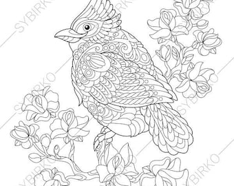 Red Cardinal Bird. Coloring Page. Animal coloring book pages for Adults. Instant Download Print