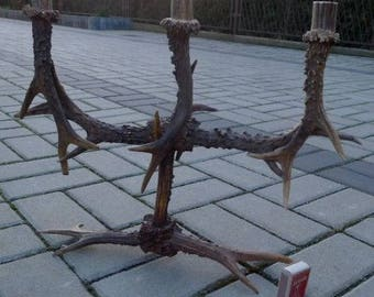 Fine new handmade red roe deer antlers candlestick taxidermy trophy Home Decor