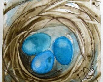 Bird Nest Watercolor Painting Original Bird Art Print
