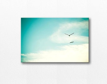 birds flying canvas photography 20x30 birds photography canvas wrap nature photography gallery canvas art canvas print large blue sky teal