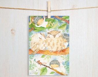 Owl Dreams Art Postcard