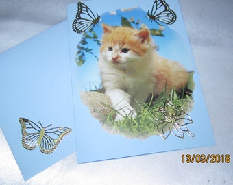 Card and envelope attached: cats