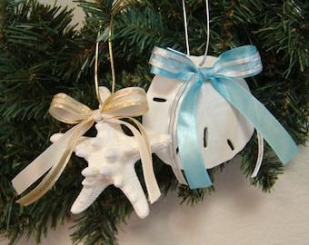 Coastal Christmas Starfish or Sand Dollar Ornament/ White Knobby Starfish Christmas Decor/ Gold or Silver Ribbon