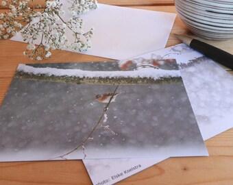 Northern Finch - Map postcard 10 x 15 cm
