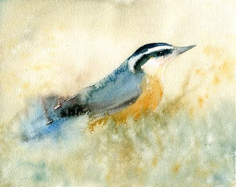 Nuthatch, Painting, Original Watercolor painting 10x8inch