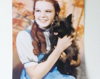Judy Garland and Toto 10 x 14 Color Photo Image/Poster The Wizard of OZ